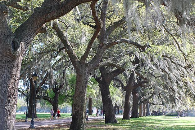 Savannah, Georgia, Estados Unidos. Foto © Silvia Lucero